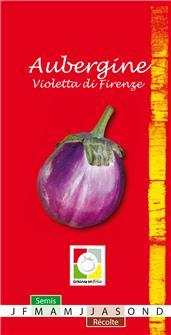 Violetta di Firenze aubergine seeds