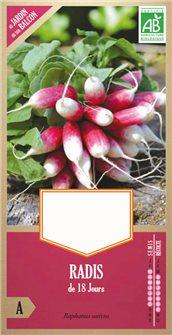 18 day radish seeds