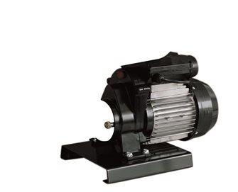 Full electric 600W Reber motor